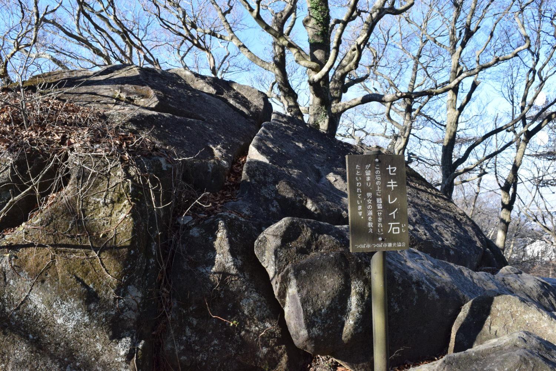 筑波山セキレイ石