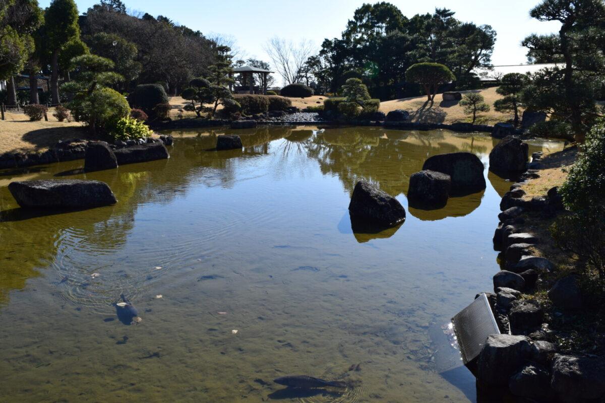 あけぼの山農業公園日本庭園